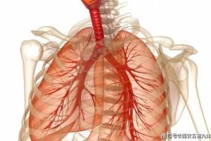 肺癌的致病原因和发病预兆前期的五大症状赶忙保藏
